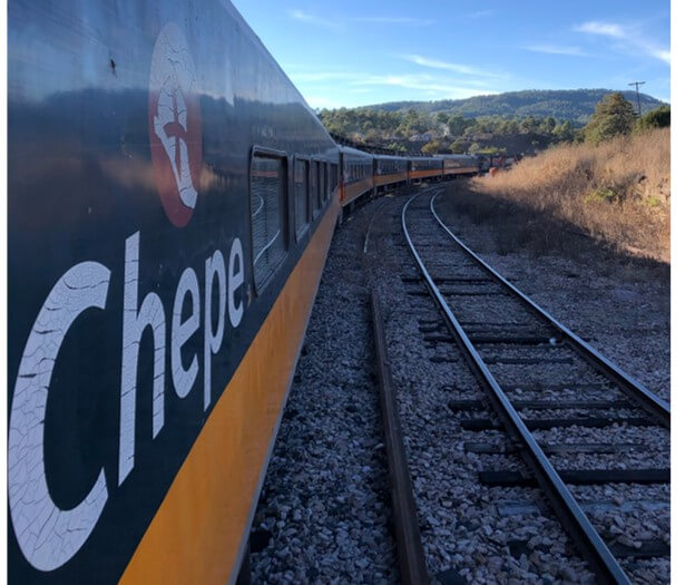 チワワ太平洋鉄道の列車